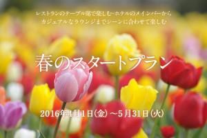 春のスタートプラン